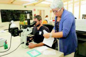 Eldine_Patologia_Estrena_LAbos- Noticia